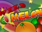 Wildmelon