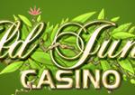 ワイルドジャングルカジノ
